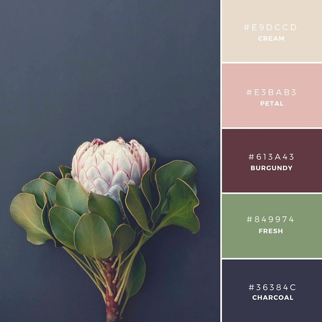 fall-color-scheme-designschool