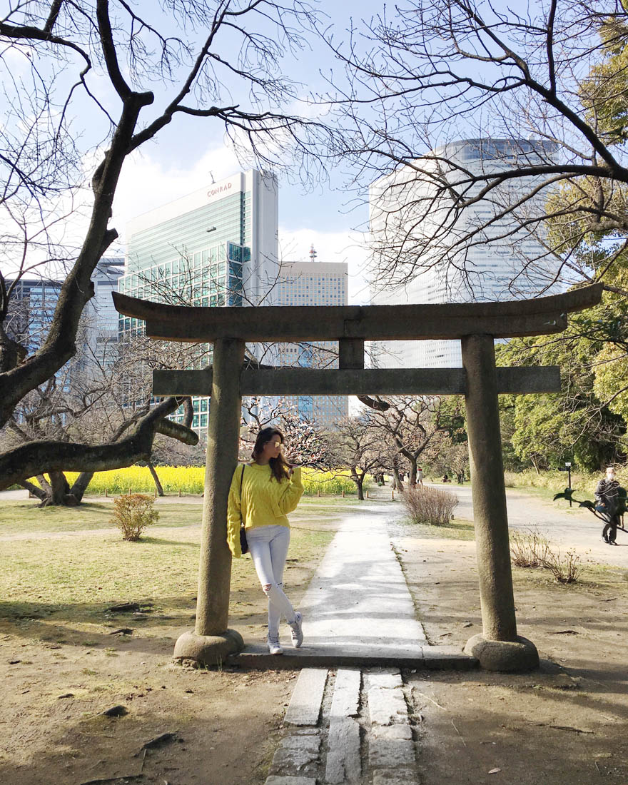 Guide To Japan. Tokyo and Kyoto in 8 days